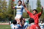 2010 桜祭16