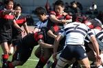 2010 桜祭20